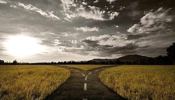 A lost deal is simply one more business out of the way on the road to the right one.